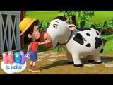 La Vaca Lola, Se