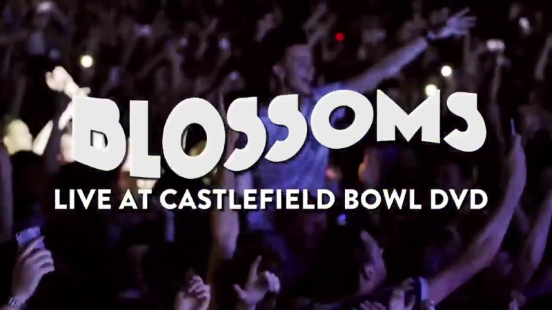 BLOSSOMS - LIVE AT CASTLEFIELD BOWL DVD