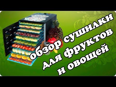СУШИЛКА (дегидратора) для овощей и фруктов \\ ПОЧЕМУ ИМЕННО ТАКАЯ?