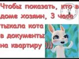doc9646441_471544892.mp4