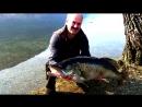 Рекордный судак 22кг Самая большая в мире пойманная Рыба