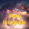 Terra Incognito Севастополь