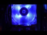 Maddy MURK Сборка ПК на AMD AM2 - Бомж ПК #27 - Комп на продажу с авито