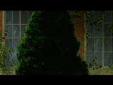 625 Сердца Пандоры Pandora Hearts Zendos &amp Molibden &amp Eladiel &amp Zlo &amp Azart &amp Shoker