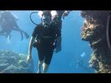 Нет слов...если у Вас будет возможность погрузиться с аквалангом в Красном море - сделайте это!