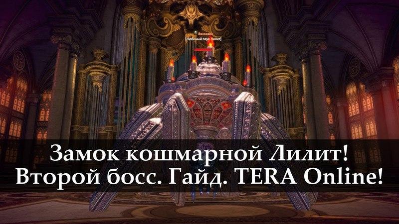Замок Кошмарной Лилит. Второй босс. Гайд. TERA Online