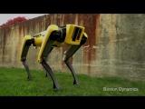 Тизер нового робота SpotMini от Boston Dynamics.