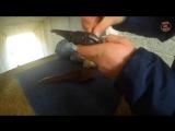 Зарядка и стрельба из Револьвера Colt Navy (Кольт) 1851г