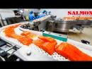 Высокооплачиваемая Работа в Польше на Рыбном Заводе