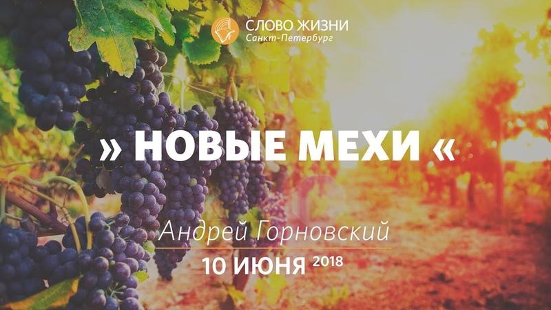 Новые мехи - Андрей Горновский, Слово Жизни, г. Санкт-Петербург