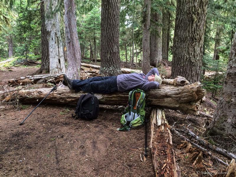 США, штат Вашингтон: Однодневный пеший поход в Berkeley Park