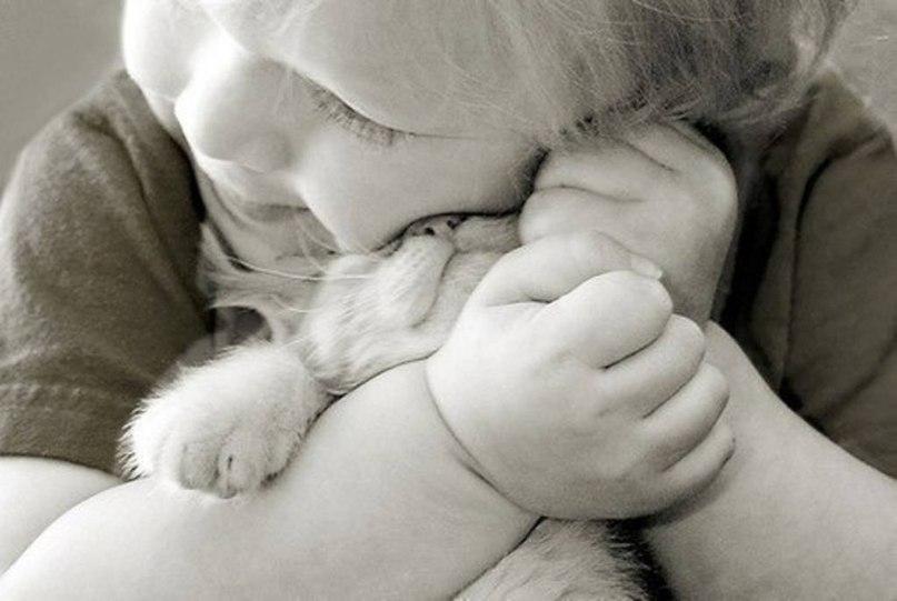Люблю тебя трогательные картинки
