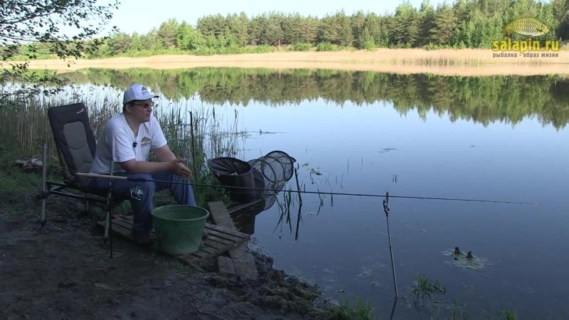 Ловля карася на пруду пикером [salapinru]