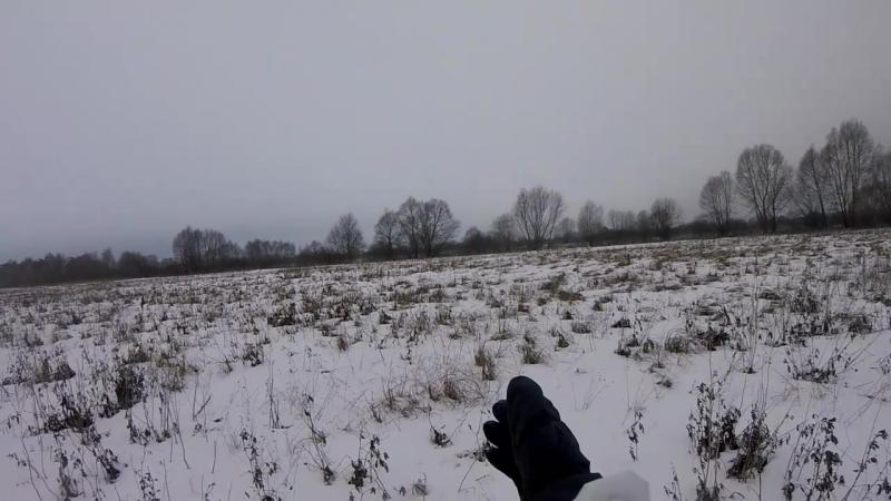 История про то как неопытный охотник зайца гонял)