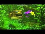 Finding Nemo Filthy Tank Scene