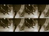 video_2018_03_03_21_51_05.mp4