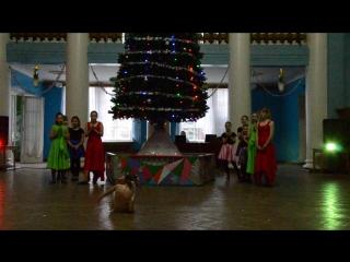 21.12.2017г.Новогоднее выступление в ДК ПЕРВОМАЙКА,Ксения-соло,контемп.
