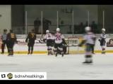 Вратари КХЛ | НХЛ