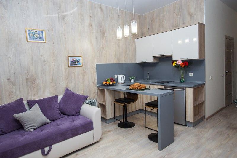Гостевая квартира-студия 29 м в Светлогорске.