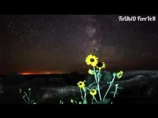 Сила вера Нашего Любимого Пророка Мухаммада с.а.в