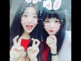 [INSTAGRAM] Аврора-кролик и Лу-кролик!