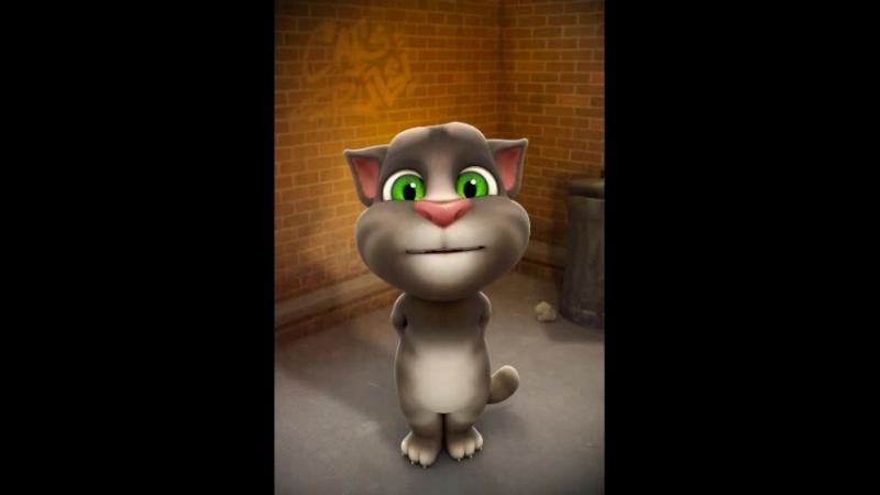 Говорящий кот том ароновое благословение mp4