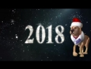 Prikolnoe pozdravlenie s novym godom 2018 god sobaki new year 2018 year of the dog 1