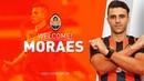 Добро пожаловать в Шахтер, Жуниор Мораес!