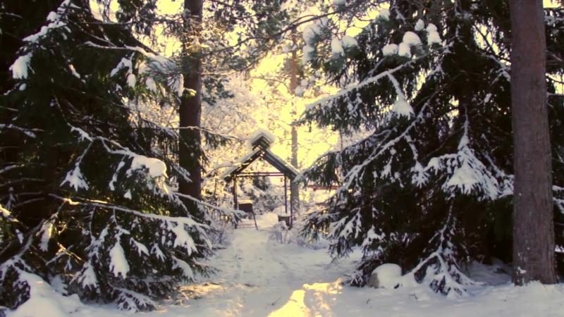 Зима в Мандрогах