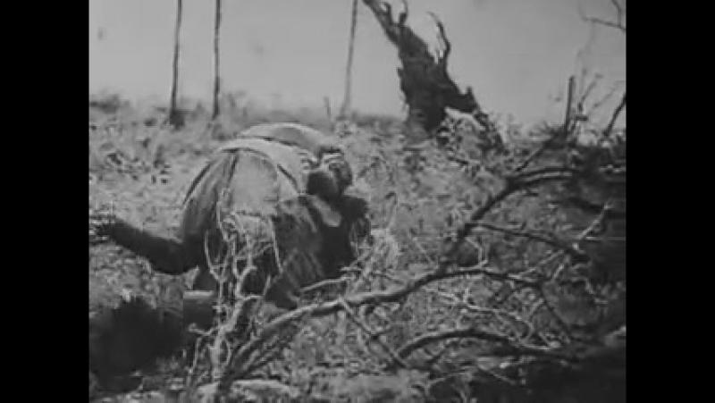 Вторая Мировая война день за днем серия 25 22 июня 1941 года