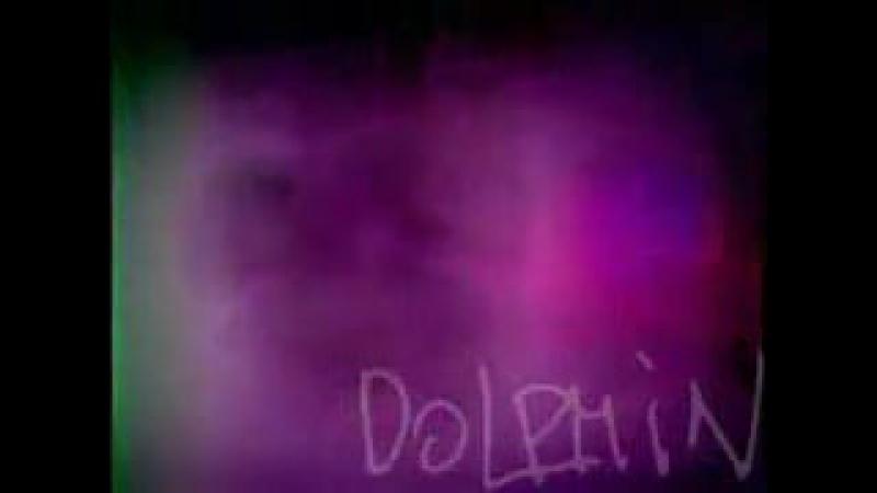 Delfin_Chuzhoj