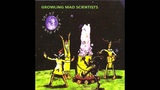 Growling Mad Scientists - Do Androids Dream Of Electric Sheep HQ