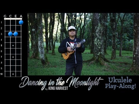 Dancing In the Moonlight (King Harvest) Ukulele Play-Along!