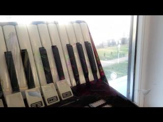 Видео от блоггеров Оркестра Баянистов