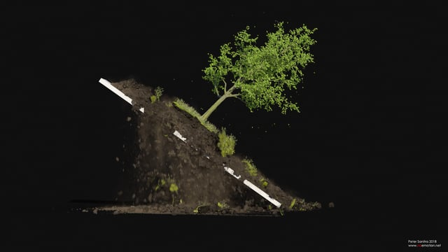 Houdini 16.5 Tree/Soil Wedges
