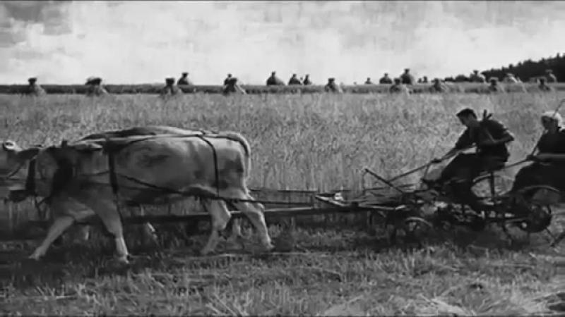 Der geplante Tod ▶ Doku ▶ Hooten-Plan - Die Vernichtung von Millionen Deutschen