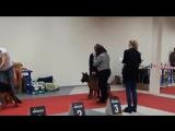 ЧФ РФЛС клуб Каскад 27.01.18