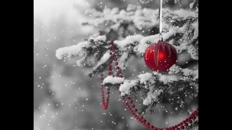 Пушистой вам зимы и осадков в виде счастья! ❄❄❄