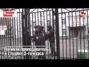 Пять самых жестоких нападений в российских школах