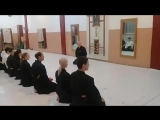 Тренировка по  айкидзюдзюцу. Клуб японских боевых искусств