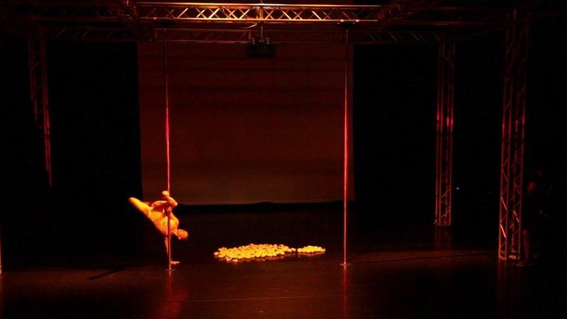 Pole Theatre Hungary 2018 EKATERINA BEREZENKO Pro Art winner Pro overall winner