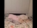 милая кроватка, я к тебе иду!