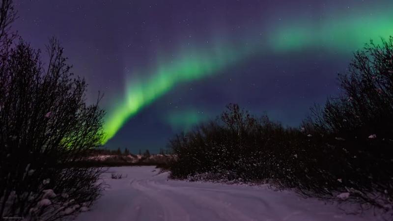 Северное сияние, Ямало-Ненецкий автономный округ. Таймлапс