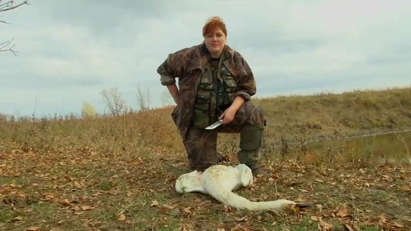 Один из главных адептов притравок Елена Горбунова убивает лебедя, катается на авто с незачехлённым ружьём и убивает лису