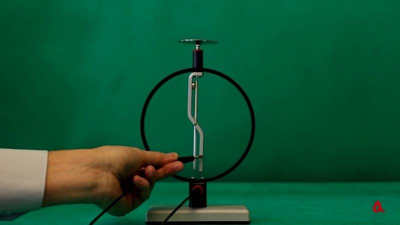 Электростатическая индукция - Физика в опытах и экспериментах.