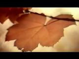 Нани Брегвадзе Жёлтый лист