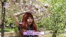 "CéCi Korea 쎄씨 on Instagram: ""CeCiStar 현아의 로망원데이 2탄! 오사카성 꽃놀이편🌸 꽃보다 예쁜 현아의 오사카성-도톤보리 나들이 풀영상을 공개합니다👏🏻 현아와 함께 여행하는 기분이 들거예요. 쎄씨 페이스북, 유튜브 채널에서 꽃현아와 ..."