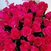 Utaflowers - доставка цветов Подольск, Климовск