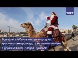 На чем Санта приехал в Иерусалим