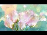 [v-s.mobi]Поздравление с 8 марта! Супер красивые  поздравления на женский день ZOOBE Муз Зайка.wmv